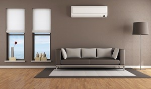 Living room-with-air-conditioner-thumb